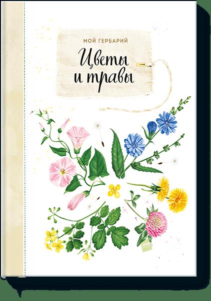 Мой гербарий. Цветы и травы салатник гербарий травы серый 17см 0 5л фаянс